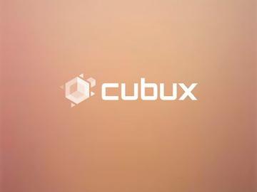 Cubux — домашняя онлайн-бухгалтерия нового уровня